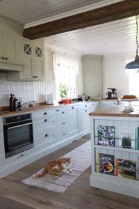 katt i lantligt kok